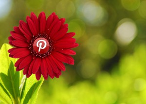 Is Pinterest helping your project bloom?